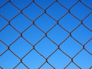 wire-mesh-1117741_640(1)